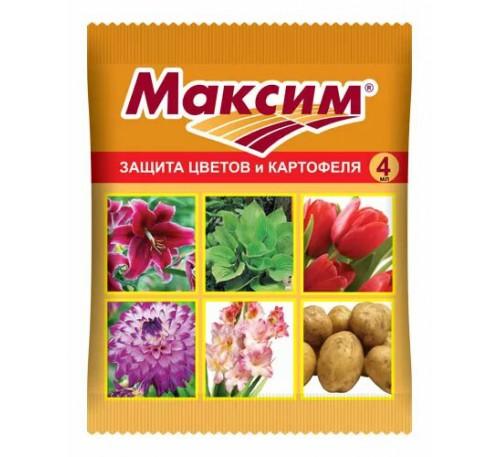 Максим Дачник 2мл.ВХ
